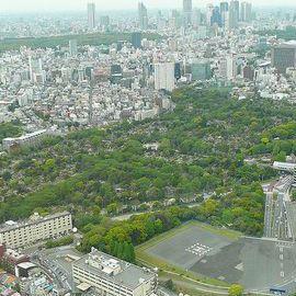 800px aoyama cemetery